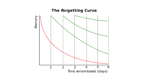 Blog 8_Forgetting Curve-1
